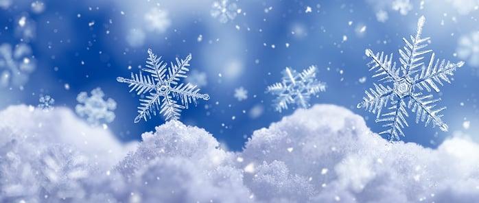 winter-wonderland-2.jpg